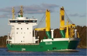 Cellus 300x194 2012 & 2013